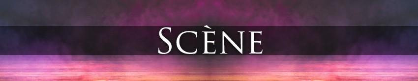 Shows sur Scène | Animation-Magie.fr