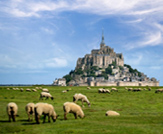 Artistes Province Normandie